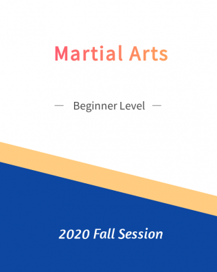 Martial Arts – Beginner Level   FREE!