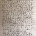 Novel AM Class 小说精读课上午班
