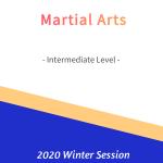 Martial Arts – Intermediate Level   FREE!