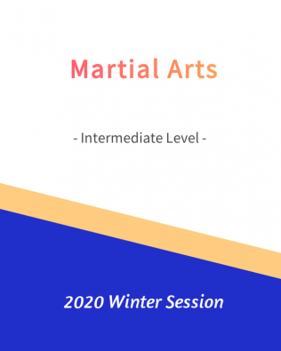 Martial Arts – Intermediate Level   FREE!- Winter 2020